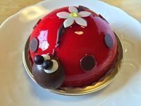 八王子南大沢:「パティスリー メゾンドゥース」てんとう虫のケーキ可愛い♪ - CHOKOBALLCAFE