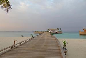 Maldives 2017 Milaidhoo ミライドゥ その41 朝の散歩2 - パウダーブルーな日々