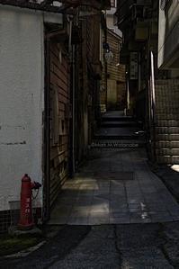 杖立温泉の路地裏 - Mark.M.Watanabeの熊本撮影紀行