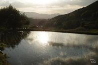 明日香 夕景に至まで遊ぶ - ぶらり記録(写真) 奈良・大阪・・・