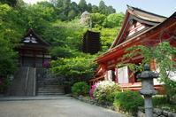 桜井市 談山 朱と緑優し - ぶらり記録(写真) 奈良・大阪・・・