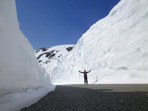 乗鞍「雪の壁」情報~。 - 乗鞍高原カフェ&バー スプリングバンクの日記②