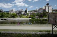 初夏の鴨川 - Wayside Photos  ☆道端ふぉと☆