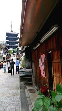 京都でぶらぶら - ケイコの日記