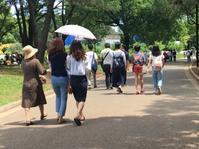 代々木上原から表参道まで歩く - 散歩ガイド