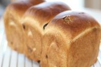 レーズンパン - パン・お菓子教室 「こ む ぎ」