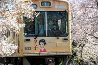 桜2017! ~嵐電 桜のトンネル~ - Prado Photography!