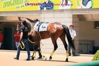 京都競馬場 - chrysalis