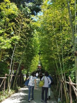 『来宮神社』で花嫁さんに遭遇@熱海の神社巡り① - 続☆今日が一番・・・♪