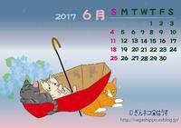 ぎんネコ☆はうすカレンダー6月 - ぎんネコ☆はうす