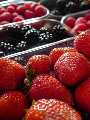 新鮮なイチゴやブルーベリーなど (Fragole mirtilli more lamponi) - エミリアからの便り
