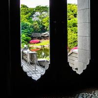 窓の外は5月 - 晴の日・雨の日
