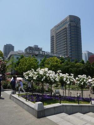 山下公園 - Kazuko' s  diary