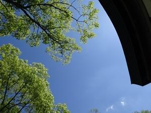 大人(プロ)たちの小遠足1(真田丸トコトコ+プチ・ヘリテージ・カフェ) - マチヤ・テラス通信~高槻の町家を照らす~