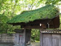葉山で作務、からの神楽坂ツアー - chayoga life