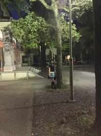 西本願寺のライトアップ - Appelez-moi Namiko!