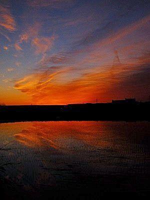 日の出前風景 - 小さな感動