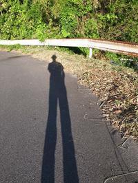 朝の散歩@瑞浪 - KOSA日記
