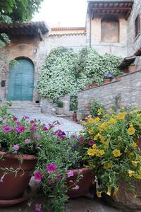 アッシジ秘密の花園・街角、イタリア - ペルージャ発 なおこの絵日記 - Fotoblog da Perugia