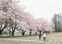 お誕生日旅行-6- - ayumilife with kate