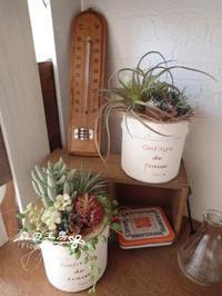 アーティフィシャル多肉*ポットアレンジ - 森の工房 Flower Work ナチュラルスローな空間