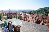 キュビズム建築にあのスタバも!初めてのプラハ街歩き #チェコへ行こう #visitCzech - ! Buen viaje!(ブエン ビアーへ)旅と猫