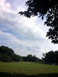 新宿御苑でルンピニー公園の旅 with 旅の師匠 - しっかり立って、希望の木