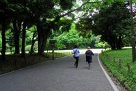 表参道から参宮橋(4) - M8とR-D1写真日記