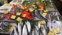 旬のおさかな - 埼玉県魚市場「市場あれこれ」