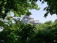 岡山城と磯田さん - 三日おばさん