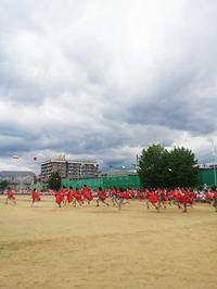 ぴかり☆スポーツフェスティバル - サリーハウス☆幸せは日々の中にかくれんぼ