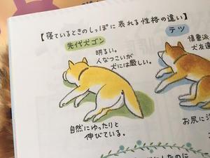 「いぬのきもち」の連載がボリュームアップ - アトリエkotori*のほほん柴犬日和