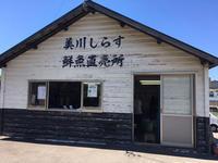石川(白山市美川):美川しらす鮮魚直売所で「釜揚げしらず」と「干ししらす」 - ふりむけばスカタン