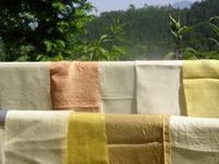 草木染物語の始まり - 自然からの贈り物/草木染め