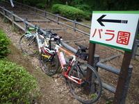 真岡井頭公園と餃子 - 自転車走行中(じてんしゃそうこうちゅう)