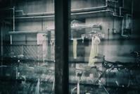 ガラスの向こう… - Photo & Shot
