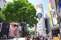 5月29日(月)今日の渋谷109前交差点 - でじたる渋谷NEWS