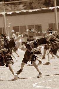 長男小学校最後の運動会 - komorebi*