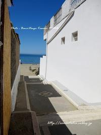 """""""初!ビーチ♪""""~ローマ近郊の小さな小さな海沿いの村から♪ 2017~ - ROMA  - PhotoBlog"""