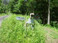 地元民に愛されている山 子檀嶺岳 (1,223.1M)  に登る - 風の便り