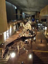 ティラノサウルスレックス - bitebyyourskin
