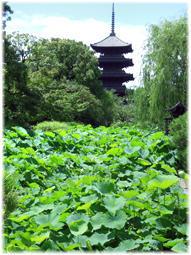 京都の東寺の骨董市へ(追記) - nazunaニッキ