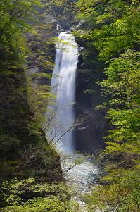 秋保大滝 新緑に囲まれて - 風の香に誘われて 風景のふぉと缶