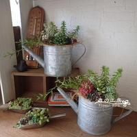 アーティフィシャル多肉*ブリキジョーロとミニスコップ - 森の工房 Flower Work ナチュラルスローな空間
