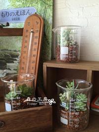 アーティフィシャル多肉*ビーカー - 森の工房 Flower Work ナチュラルスローな空間