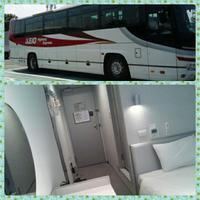 東京都内へ バスと宿で1万円 - ピースケさんのお留守ばん