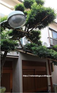 受け継ぐ家 ~外灯を自動点滅式にリノベーション~ - 身の丈暮らし  ~ 築60年の中古住宅とともに ~