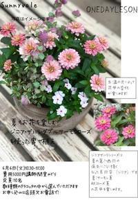 6月のOne-dayLesson&いきいき通信6月号 - さにべるスタッフblog     -Sunny Day's Garden-