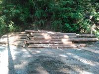 支障木の搬出の土日 - 自伐型林業 施業日記