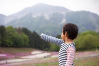 晩春の芝桜 羊山公園 - Full of LIFE